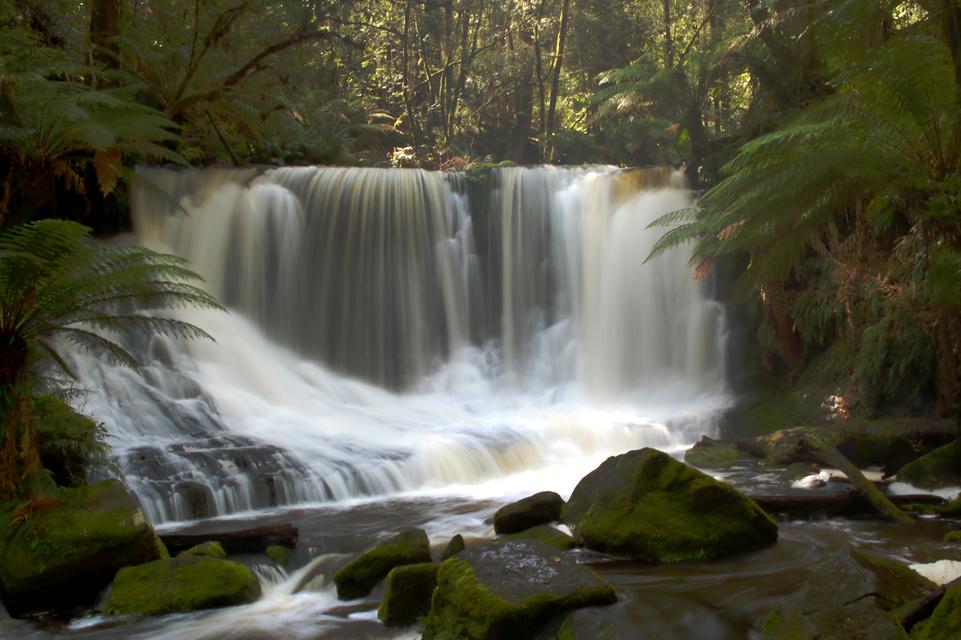 Tasmânia (foto: Eduardo Vessoni)