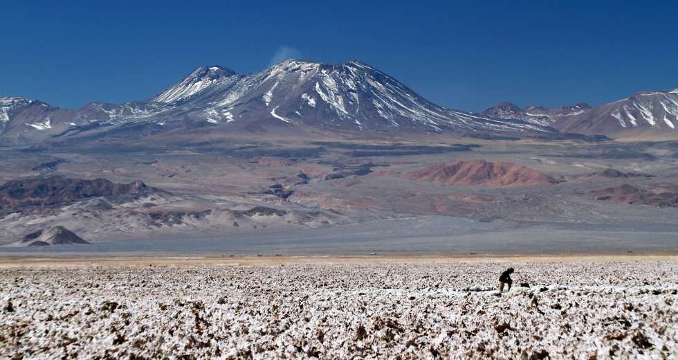 Salar de Atacama (foto: Eduardo Vessoni)