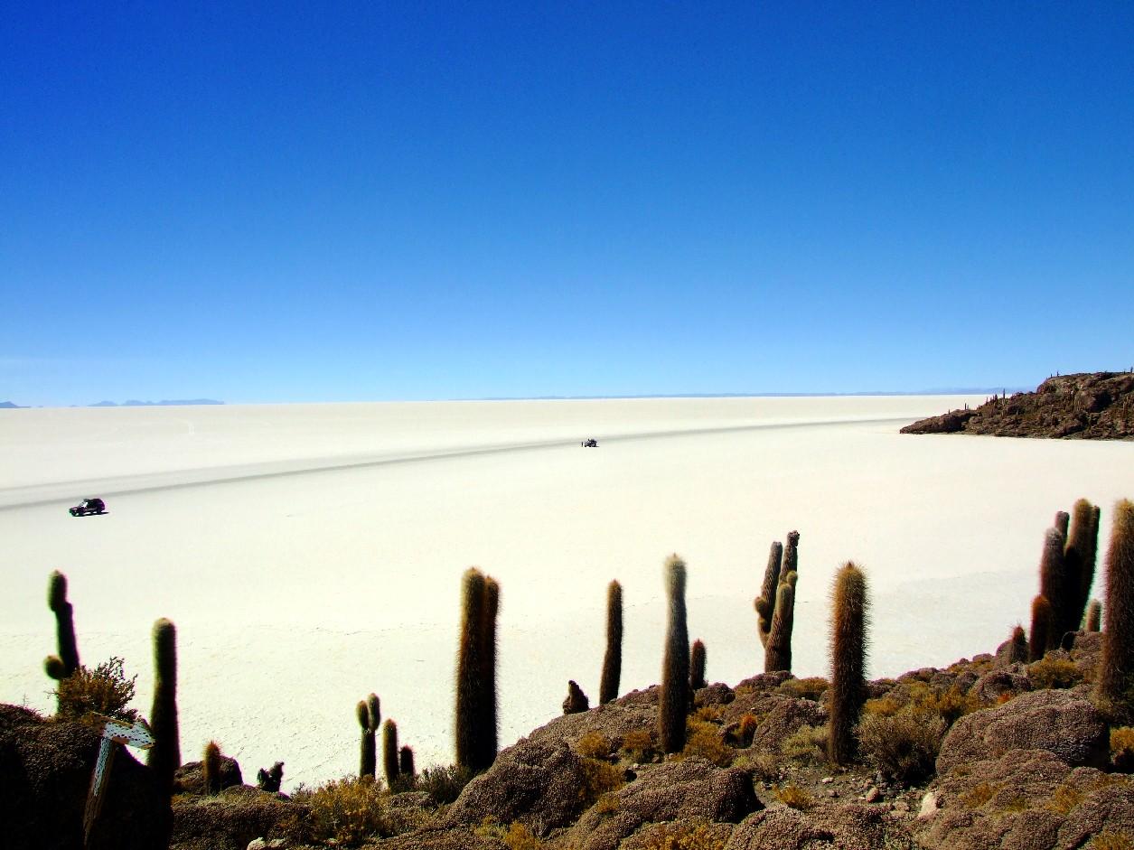 Salar do Uyuni, na Bolívia (foto: Eduardo Vessoni)