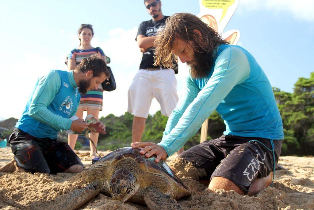 Biólogos em ação na Baía do Sueste, em Fernando de Noronha (foto: Eduardo Vessoni)