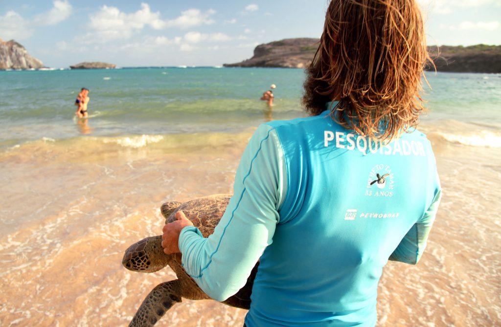 O biólogo Luis Felipe Bortolon, do Projeto Tamar, faz devolução de tartaruga após captura intencional para estudos e monitoramento, na Baía do Sueste, em Fernando de Noronha (foto: Eduardo Vessoni)