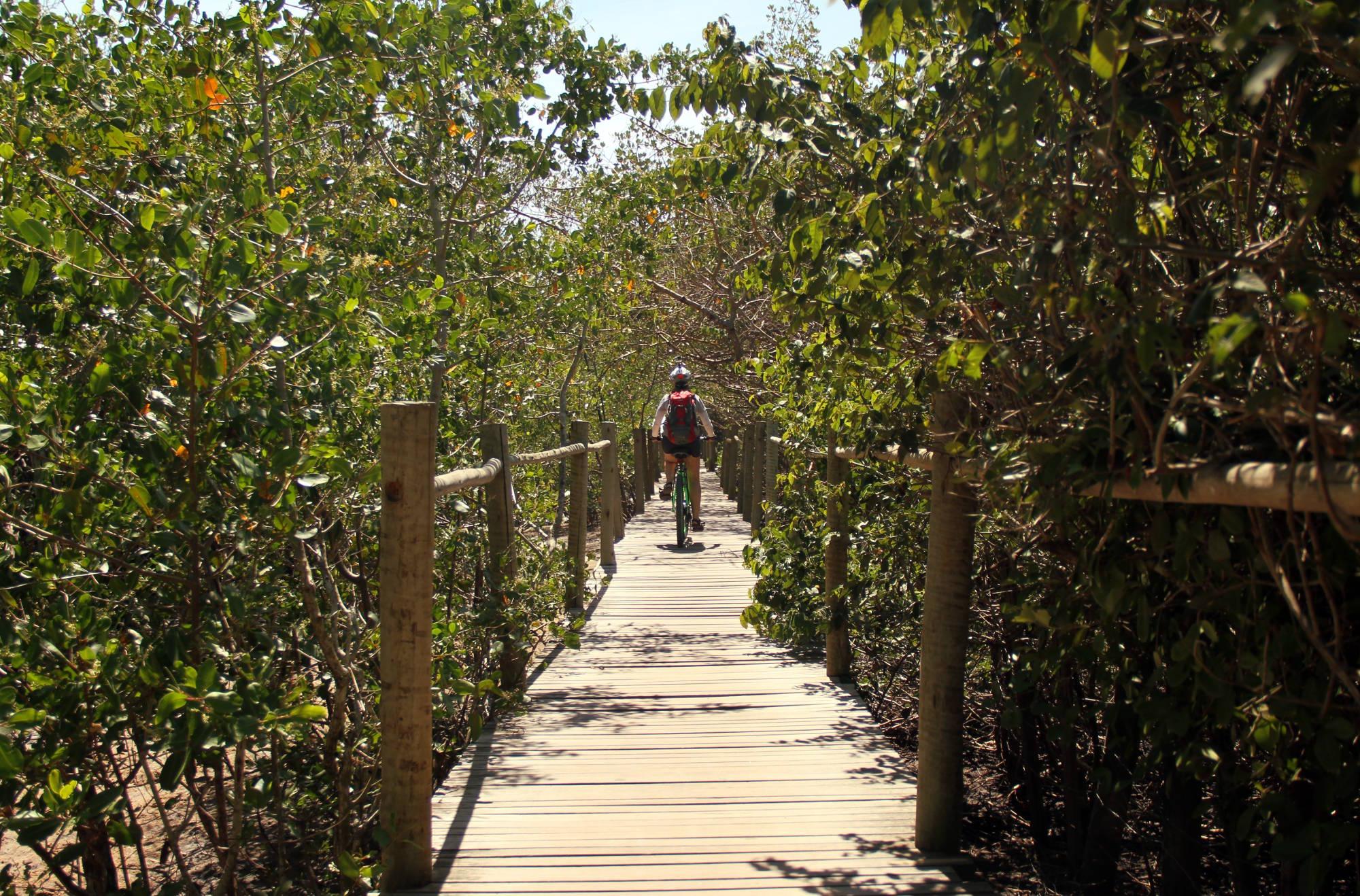 Acesso à Praia dos Coqueiros, primeira parada na travessia de bike, entre Trancoso e Praia do Espelho (foto: Eduardo Vessoni)