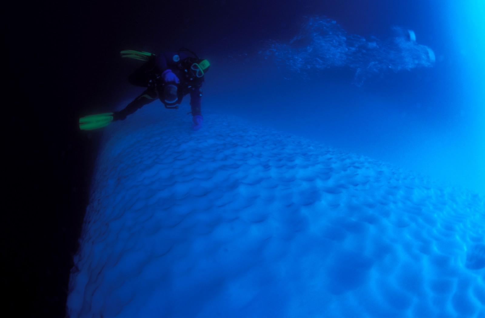 foto: Oceanwide Expeditions/Divulgação