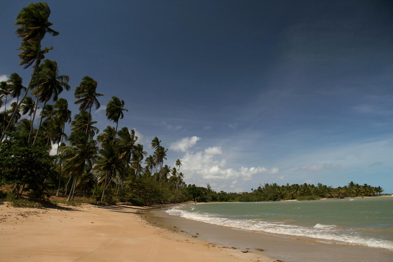 Litoral sul de Maragogi, em Alagoas (foto: Eduardo Vessoni)