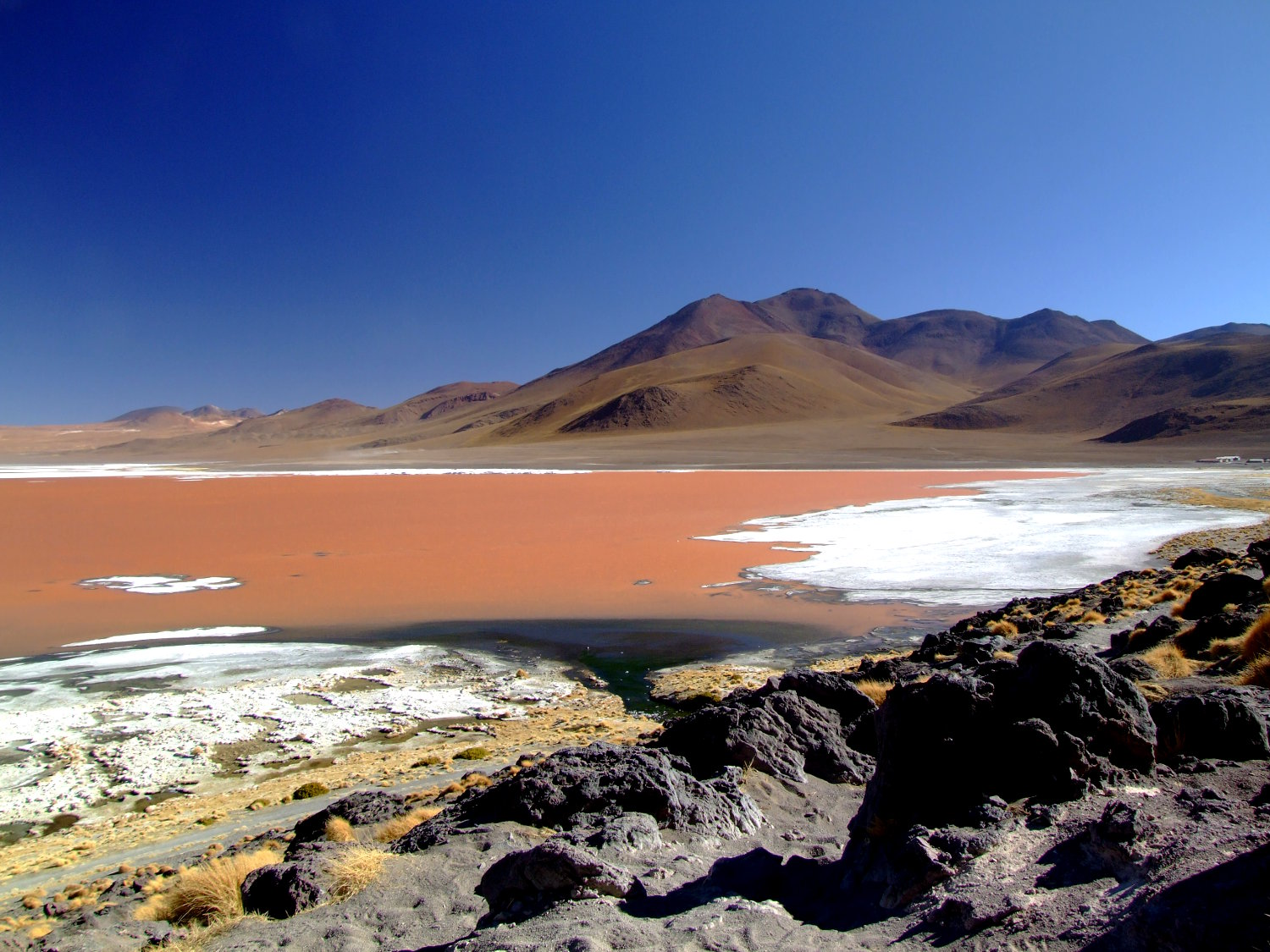 Laguna Colorada (foto: Eduardo Vessoni)