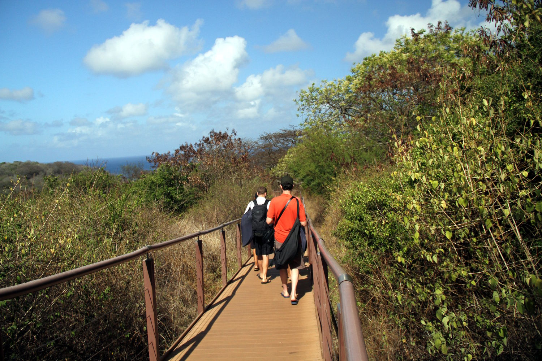 Trilha de acesso à Baía do Sancho, em Fernando de Noronha (foto: Eduardo Vessoni)
