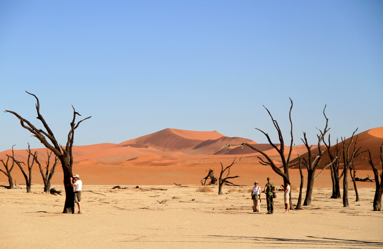 Dead Pan, na região de Sossusvlei, na Namíbia (foto: Eduardo Vessoni)