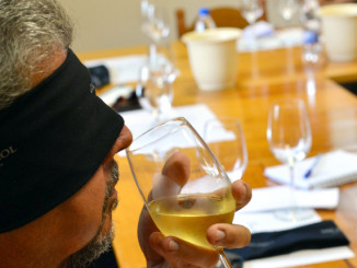 Degustação ás cegas na vinícola Dal Pizzol (foto: Divulgação)